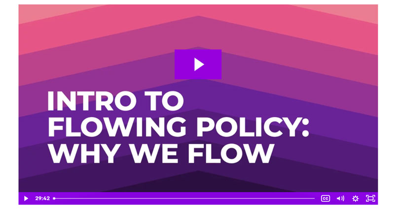 Intro to Flowing Policy